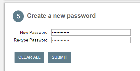 Screen capture of New Password field