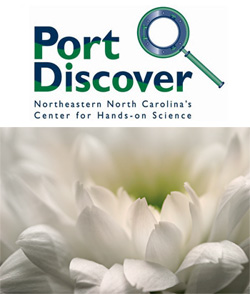 port-discover-offers-week