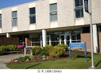 GR Little Library
