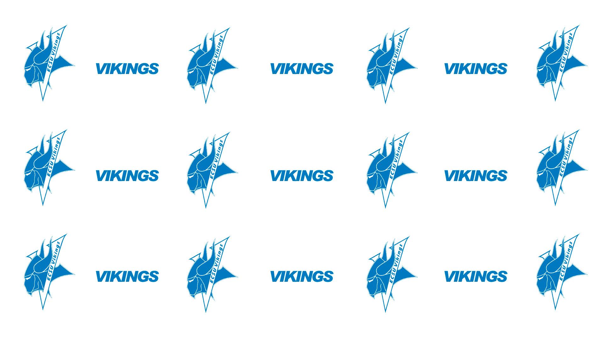 zoom background vikings