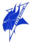Viking Head Logo blue